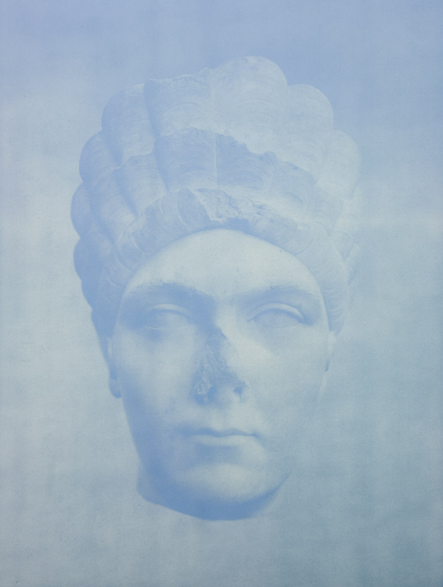 Oracle  , 2014 Anthotype 30.5 x 23 inches Ed: 3 + 2AP