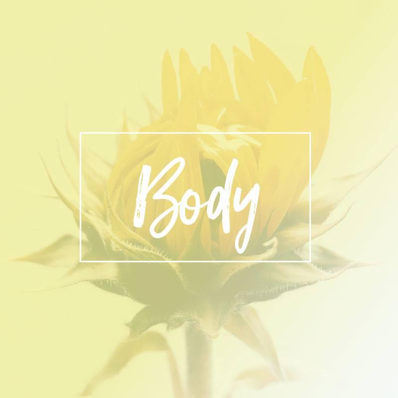 Body banner.jpg