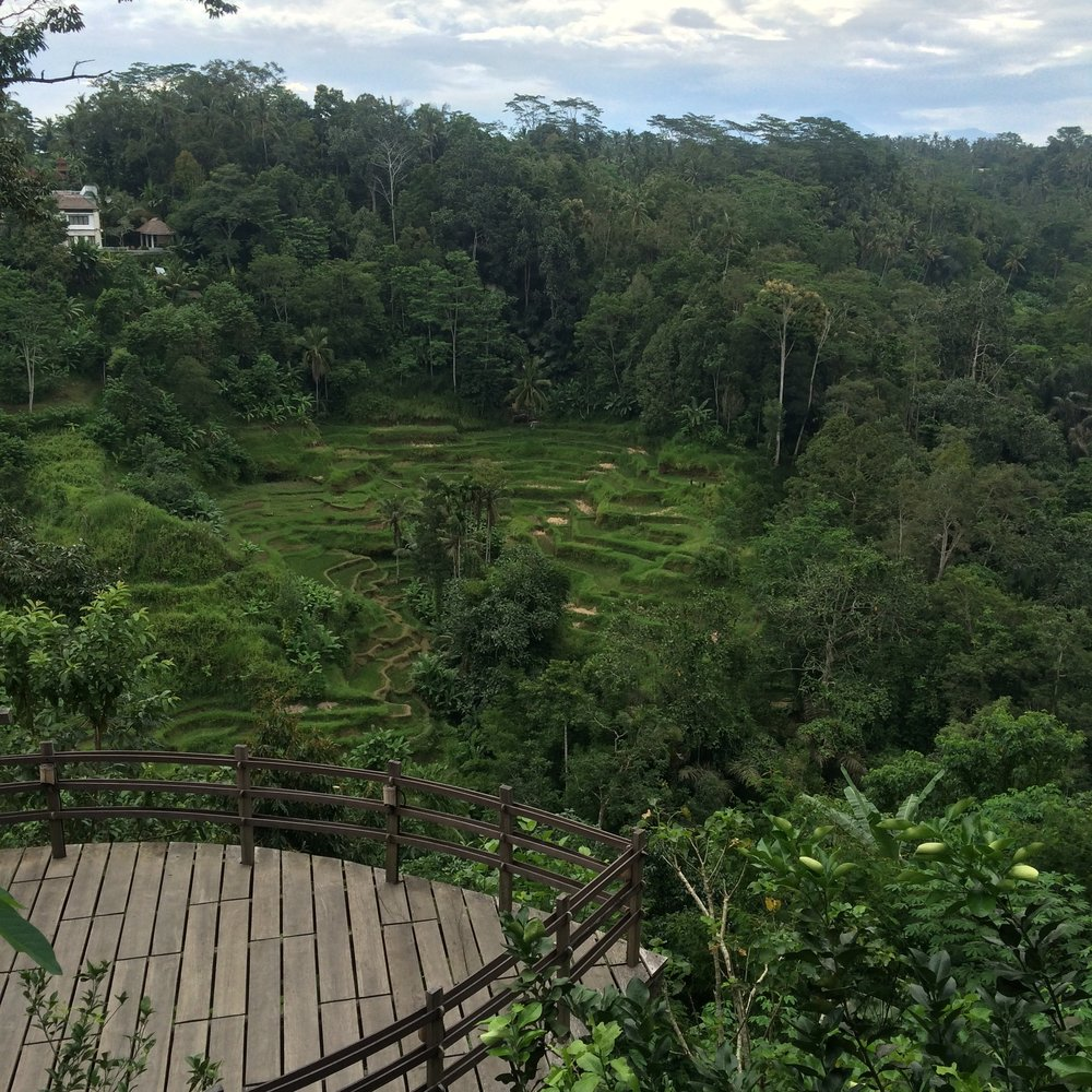 Dayka Robinson Bali Solo Travel Ubud 2016-2