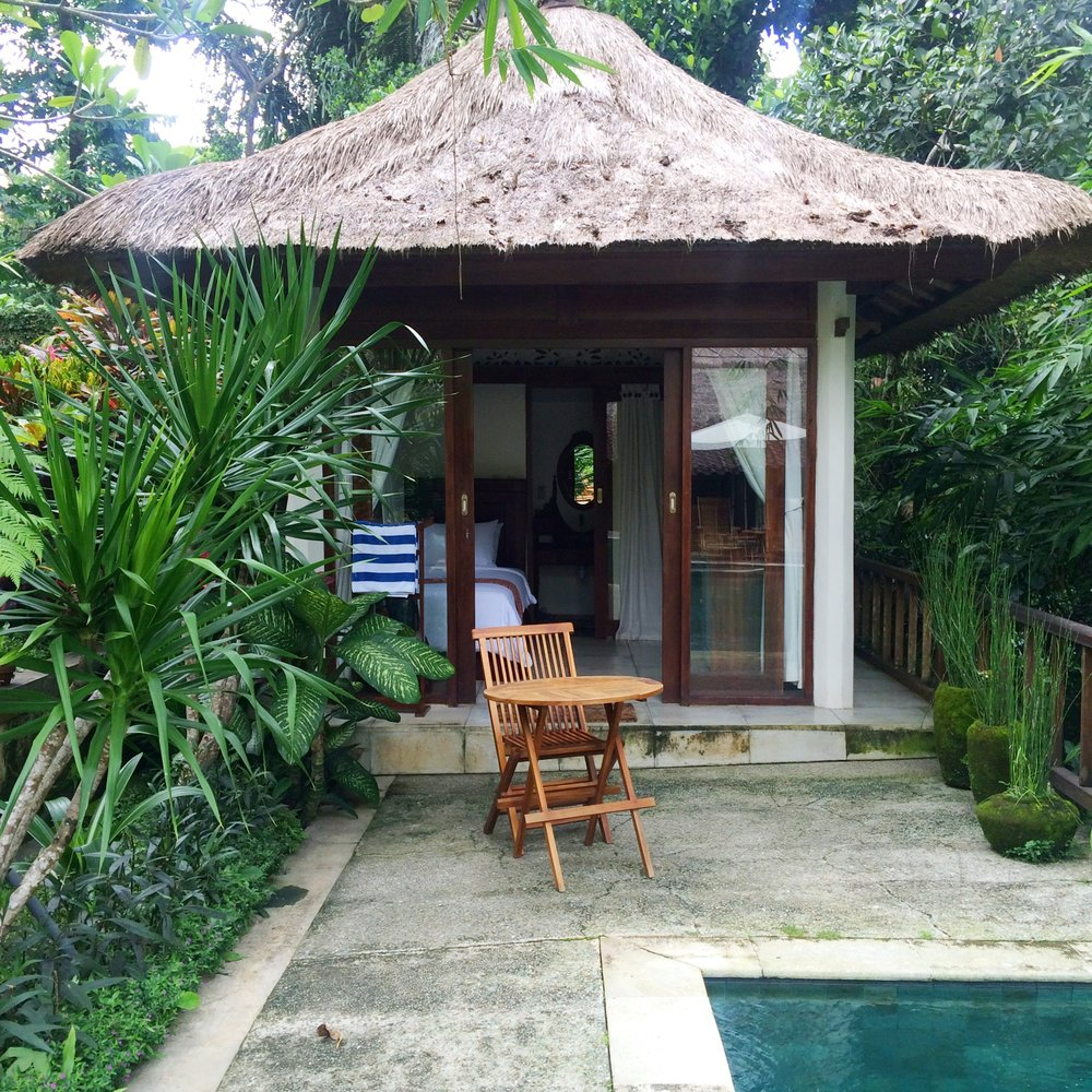 Dayka Robinson Bali Woman Solo International Black Woman Travel Ubud Paradise Room 2016