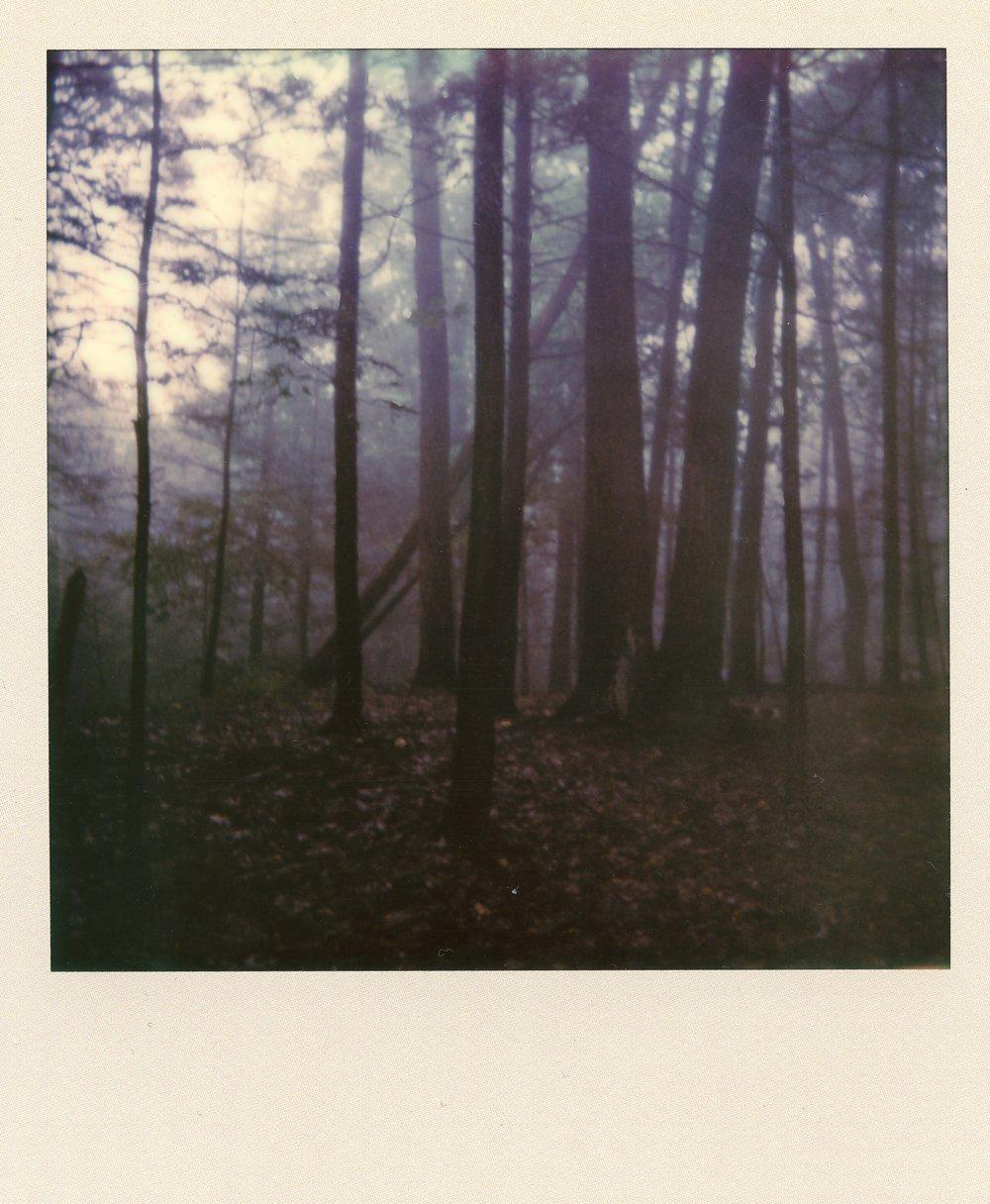 woodstock-ny-polaroid
