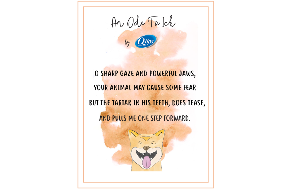 dog fial print ad.png