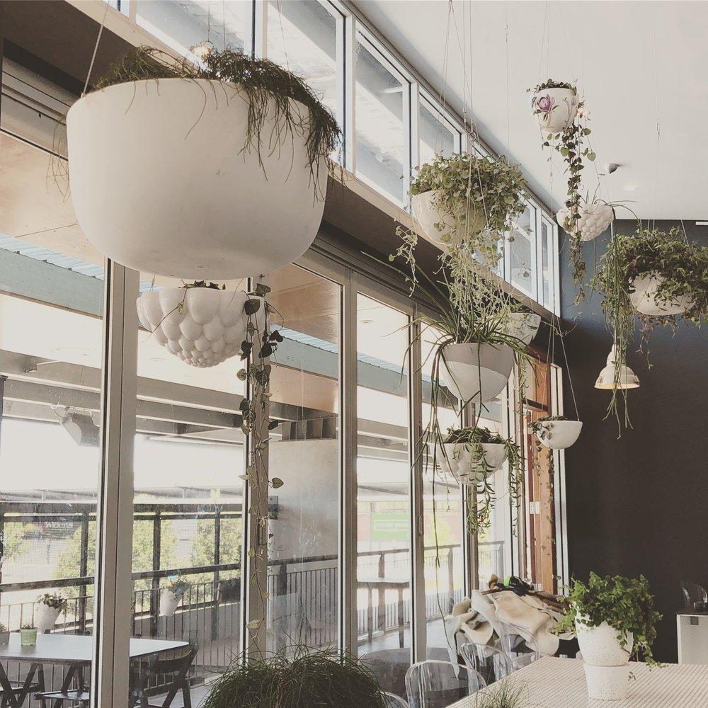 indoor4.JPG