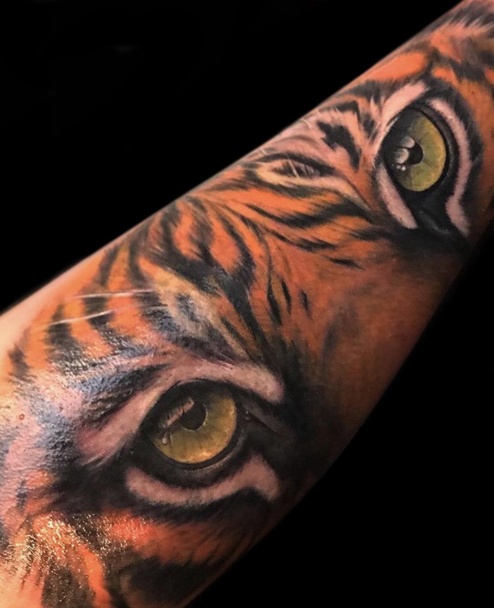 14 Tiger 1.jpg