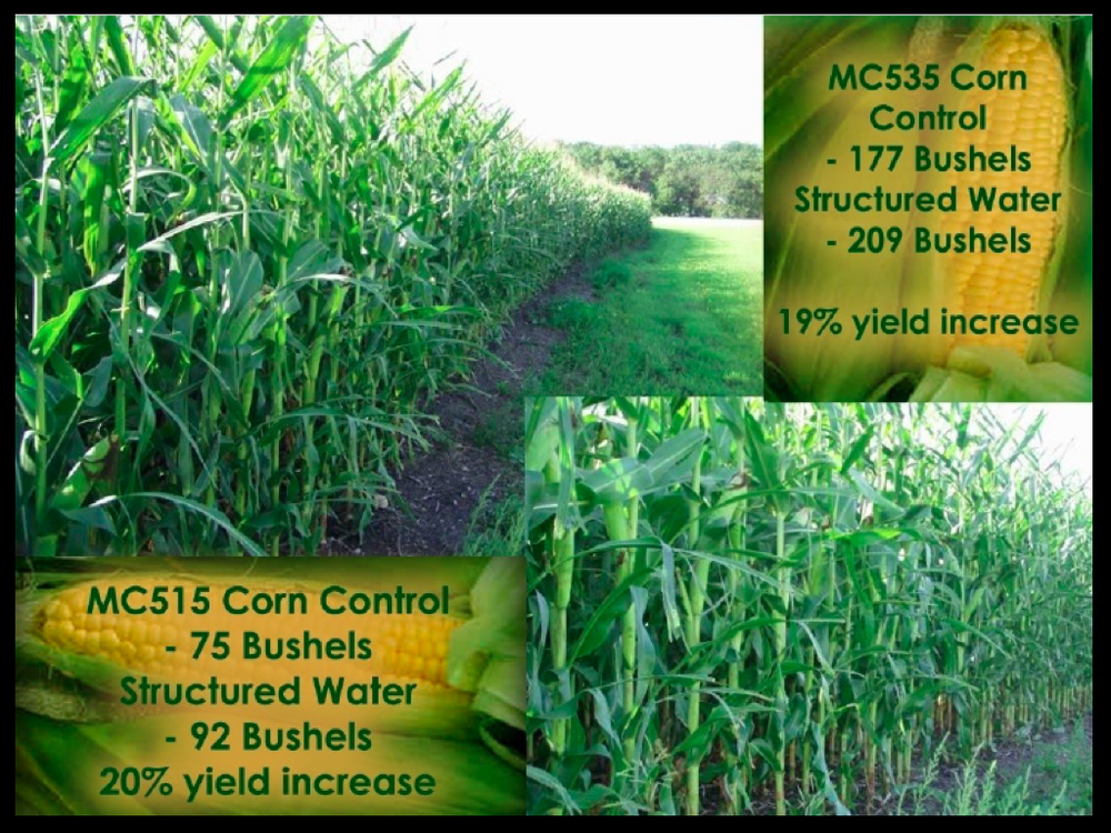 Midwest Ag Site pages.009.png