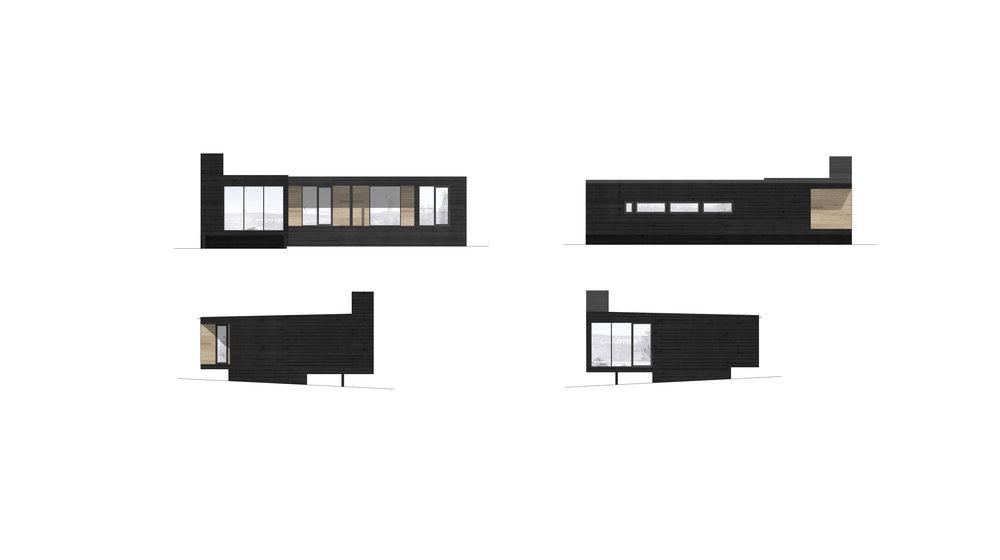 fasader samlet_winter.jpg