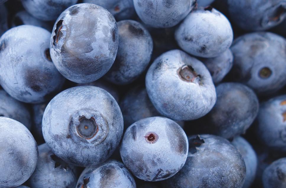 food-pr-bllueberries.jpg