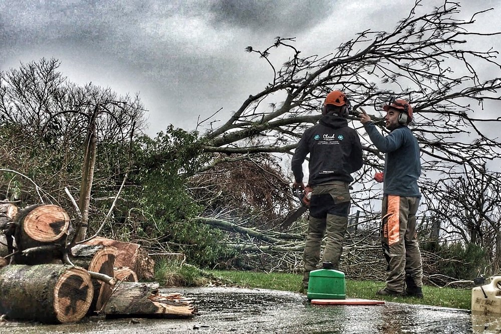 24-hour Emergency Tree Services  - In the result of an emergency situation relating to your trees, Cloud Landscapes experienced arborists are ready to assist you when you need it most.