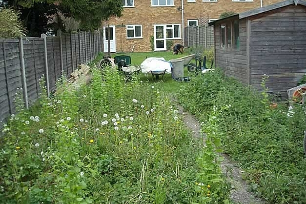 Garden Clearance - All gardens create regular waste. We are experts in transforming overgrown areas into manageable outdoor spaces. We recycle 100% of our green waste.