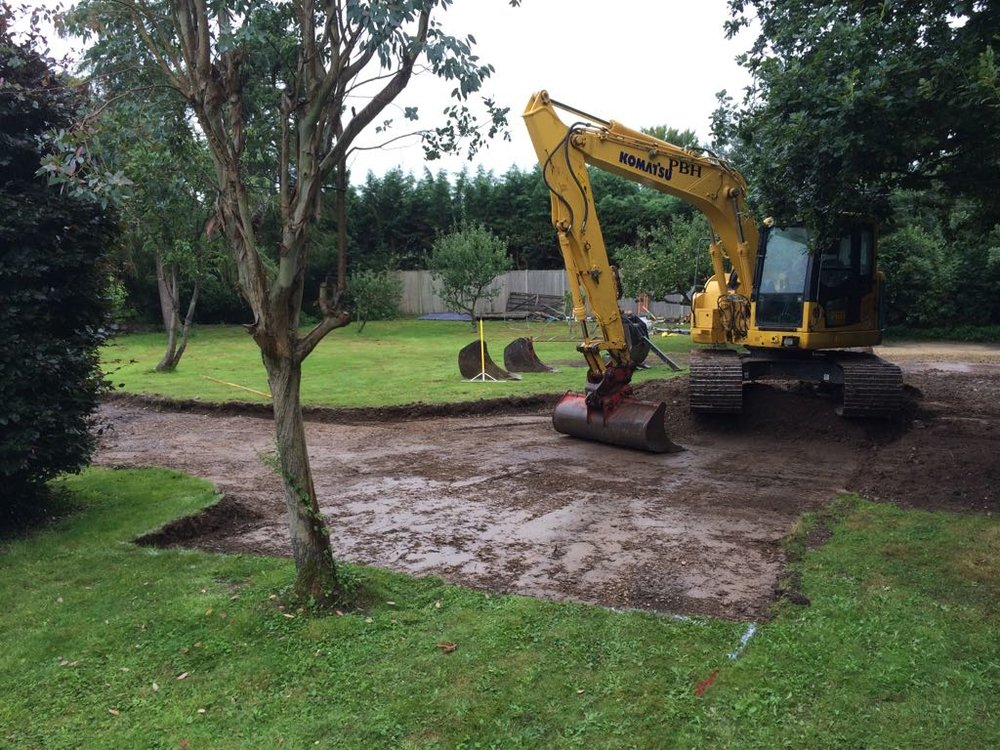 Tree & Vegetation Clearance sidlesham.jpg
