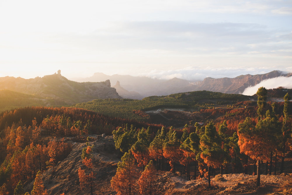 20171106  - Gran Canaria IMG_9483.jpg