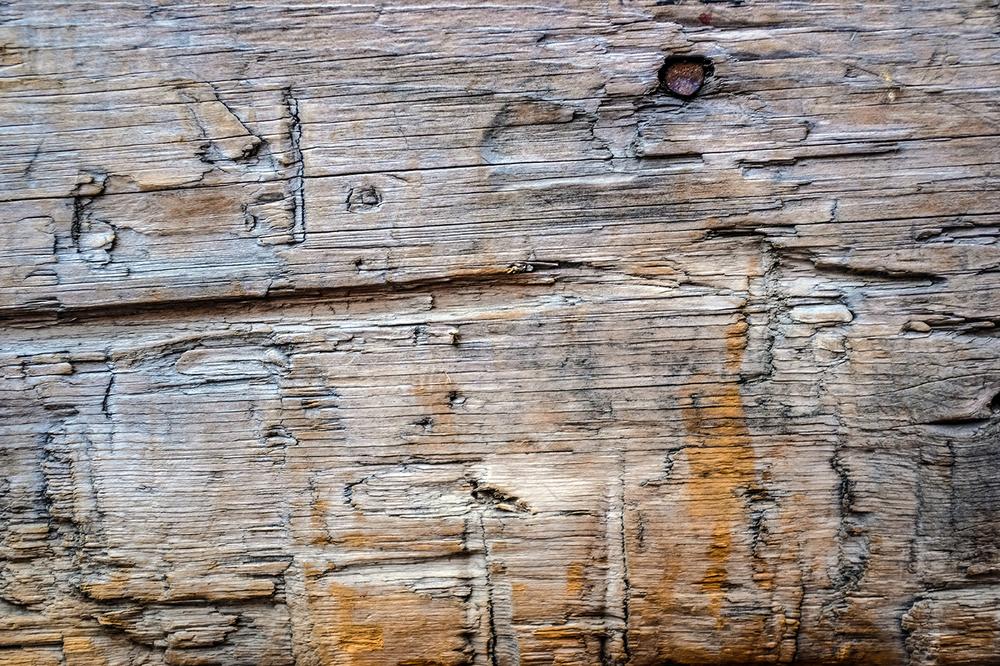 Wood-StLawr-Feb17-18E.png
