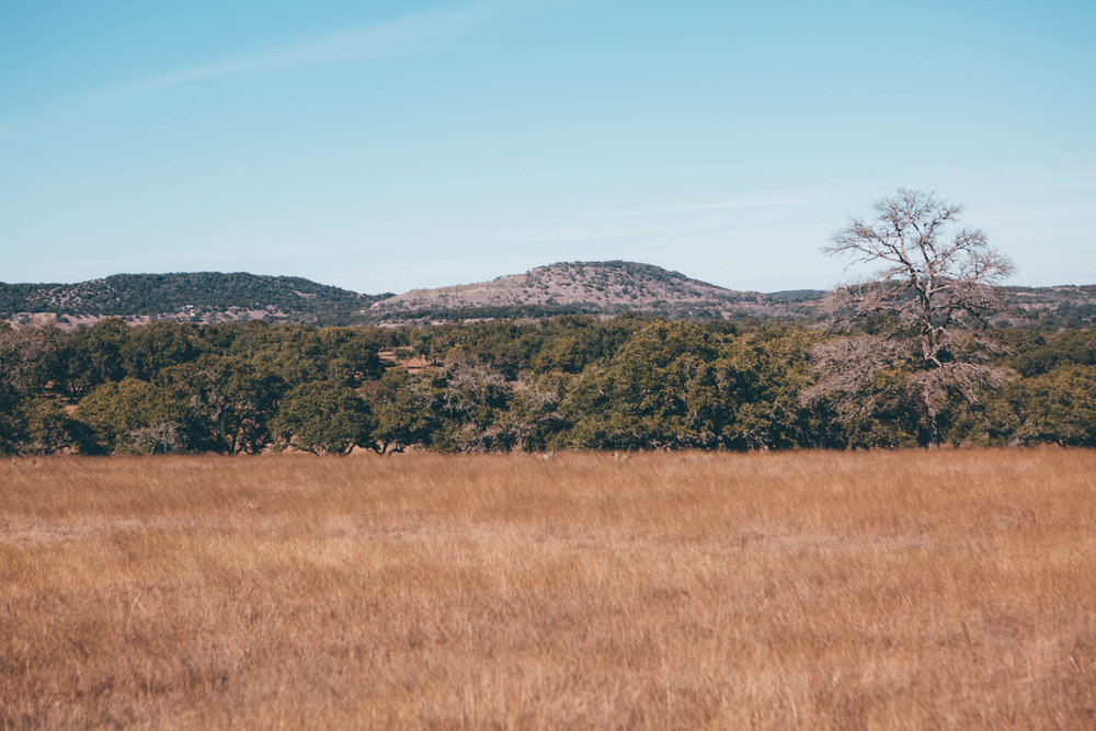 boerne_january2018-1.jpg