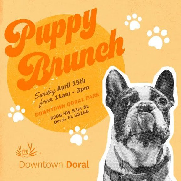 Tommorow is the EPIC Puppy Brunch Join Us!! 🥂 💜🐕@downtowndorallife