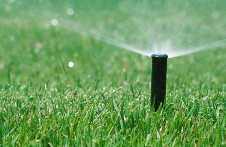 Lawn-Sprinkler460x300.jpg