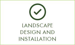 landscapy design.jpg