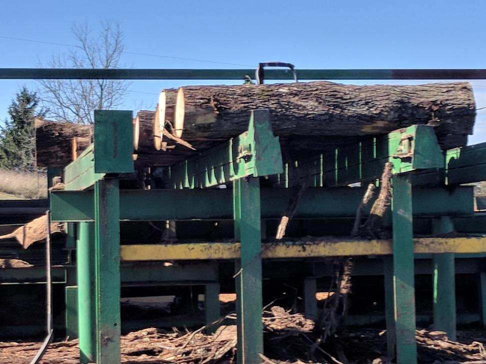Logs going into debarker.jpg