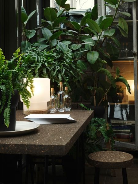 I love the dark theme in this room and the combination of a brown natural look work surface and stool with oversized plants and glass.