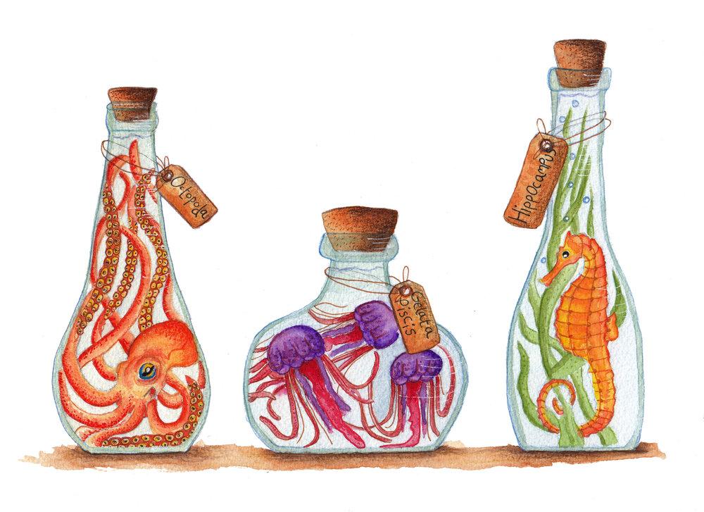 little bottels.jpg