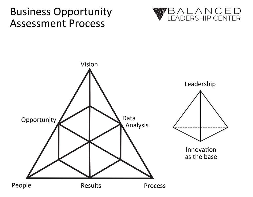 Opportunity Assessment.jpg