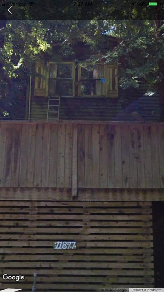 Creepy Photo of Paddock Cabin