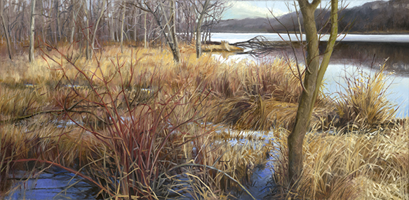 "Ferson Creek Fen Dec 11  12x24""  2015"