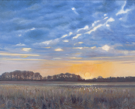"April 11 Lincoln Marsh 16x20"" 2014 (sold)"