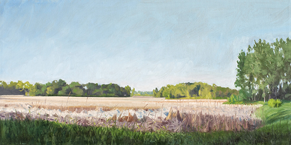 "June 5 Lincoln Marsh 12x24"" 2014"
