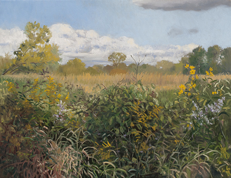 "September 21 Lincoln Marsh 14x18"" (sold)"