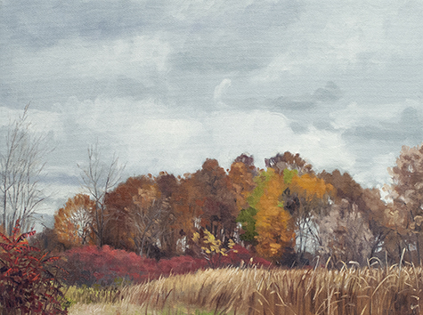 "October 21 Lincoln Marsh 12x16"" 2014 (sold)"