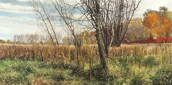 "October 24 Lincoln Marsh 15x30"" 2014"