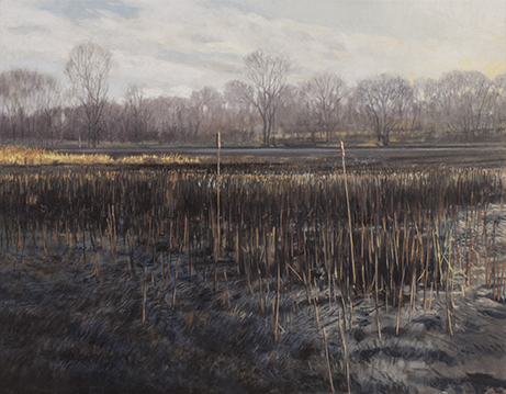"December 5 Lincoln Marsh 14x18"" 2014 (sold)"