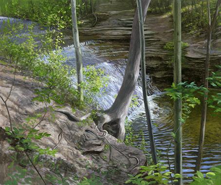"Waterfall, River Bend Bike Trail, May 25, 20x24"" _ 2017"