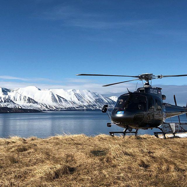 Ready to take flight! 🇮🇸🚁❤️#arcticheliskiing  #heliskiing #heliskiingiceland #skiiceland #skitothesea @arcticheliskiing