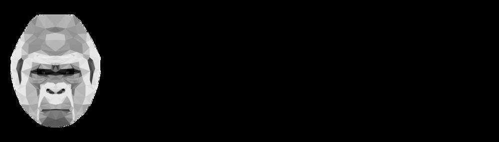 ape_logo_wide.png