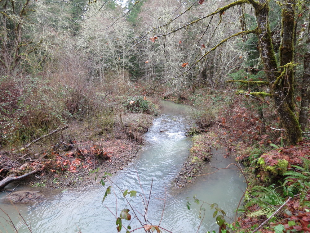 Days Creek Restoration