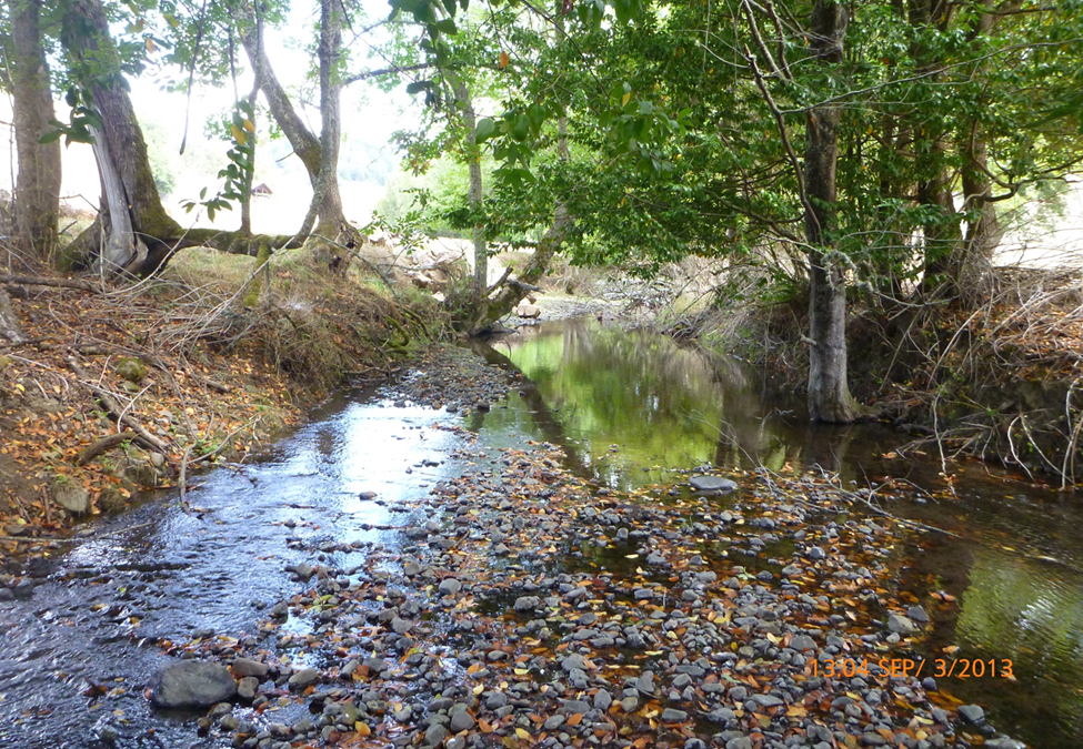 South Fork Deer Creek Restoration