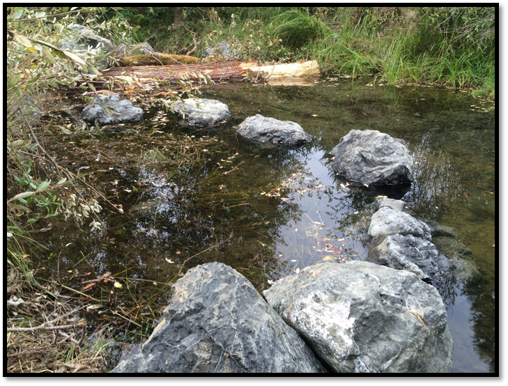 Temile Creek Restoration