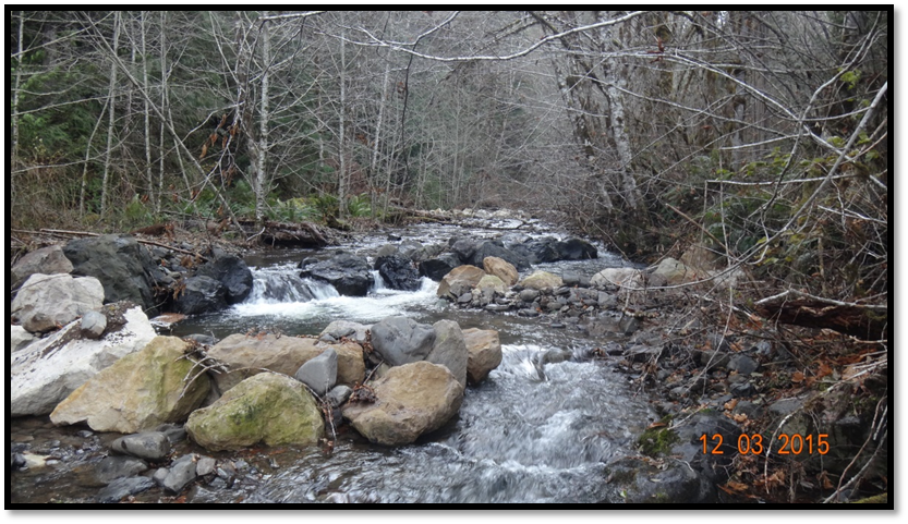 Harrington Creek Restoration