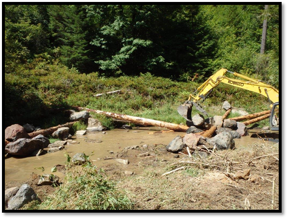 Camp Creek Restoration