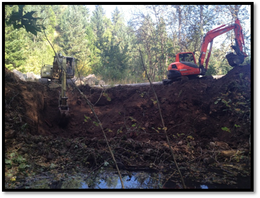 Elk Creek Restoration