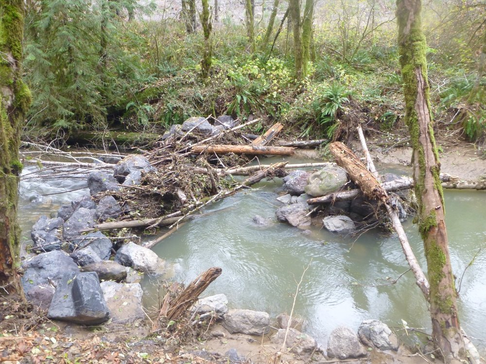 Weatherly Creek Restoration