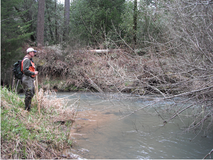 Waggoner Creek Restoration