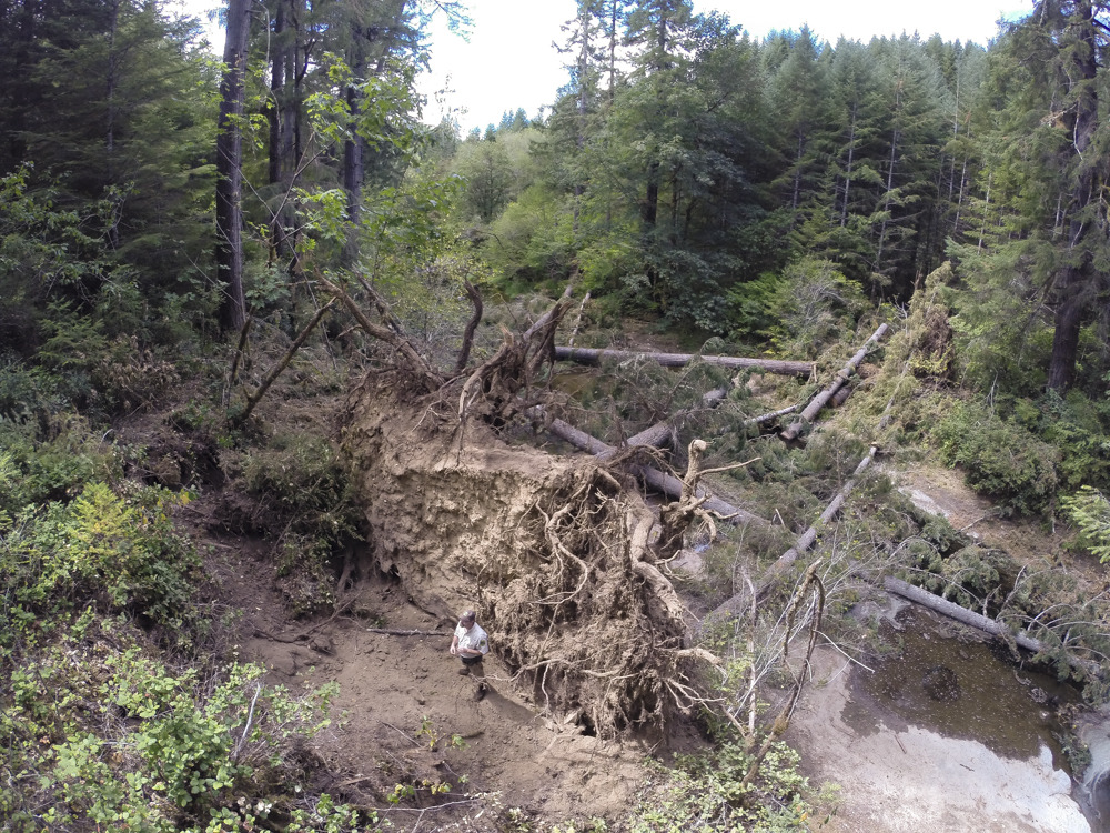 West Fork Smith River Restoration