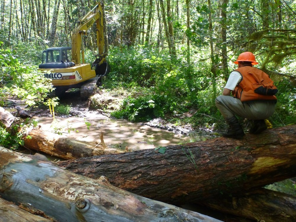 Upper Smith River Restoration