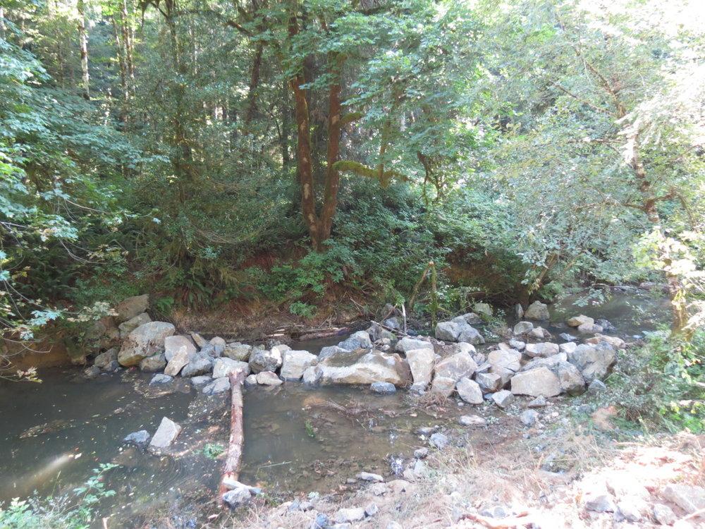 wolf creek 2012.jpg