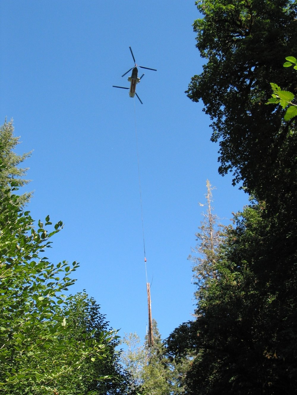 paradise creek helicopter placement.jpg