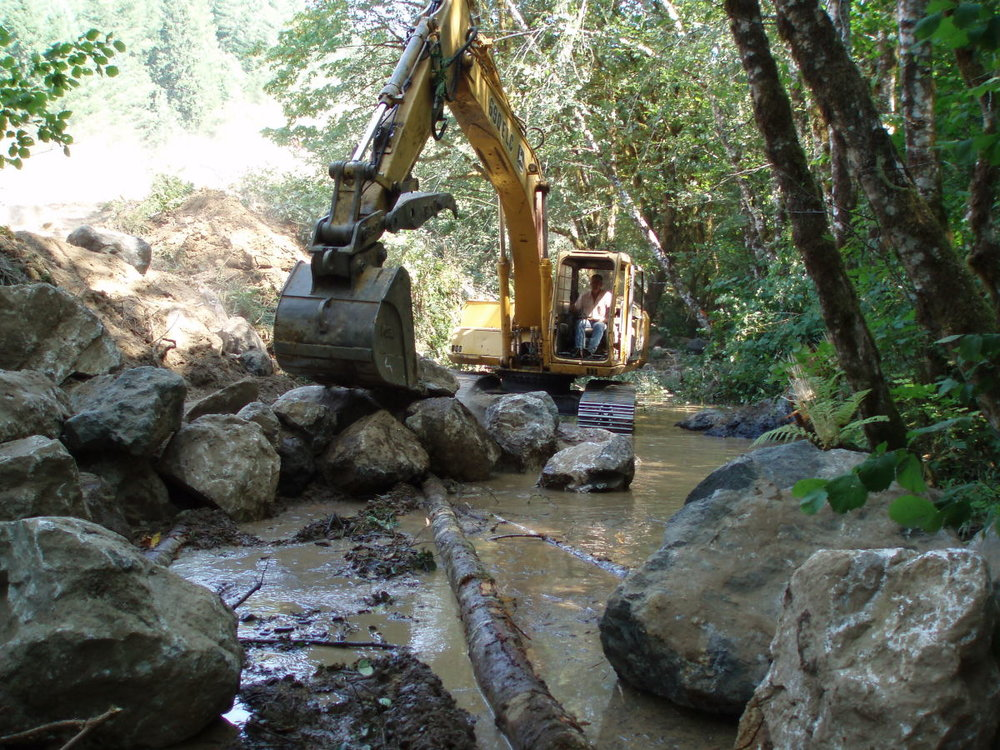 paradise creek 3.jpg