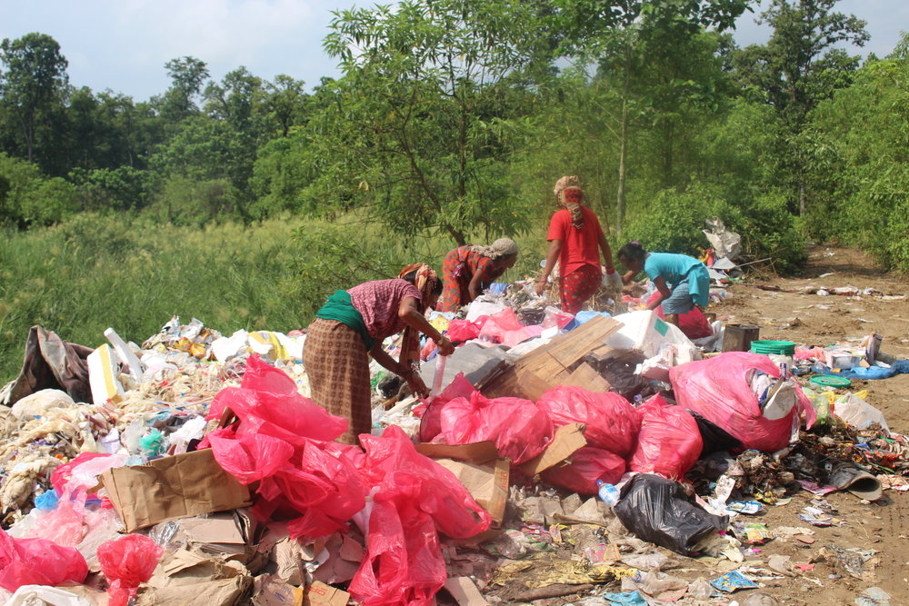 Photo from a local dump site in Chitwan National Forest