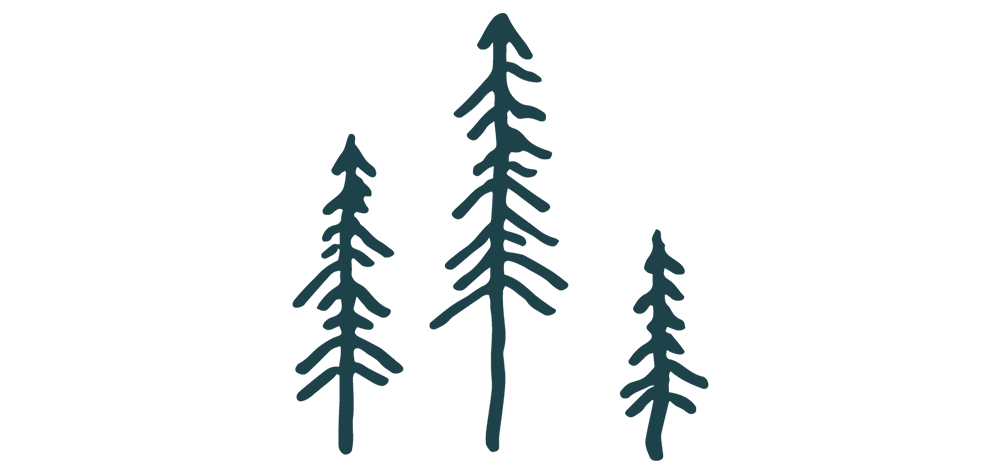trees_nacy_sm.png